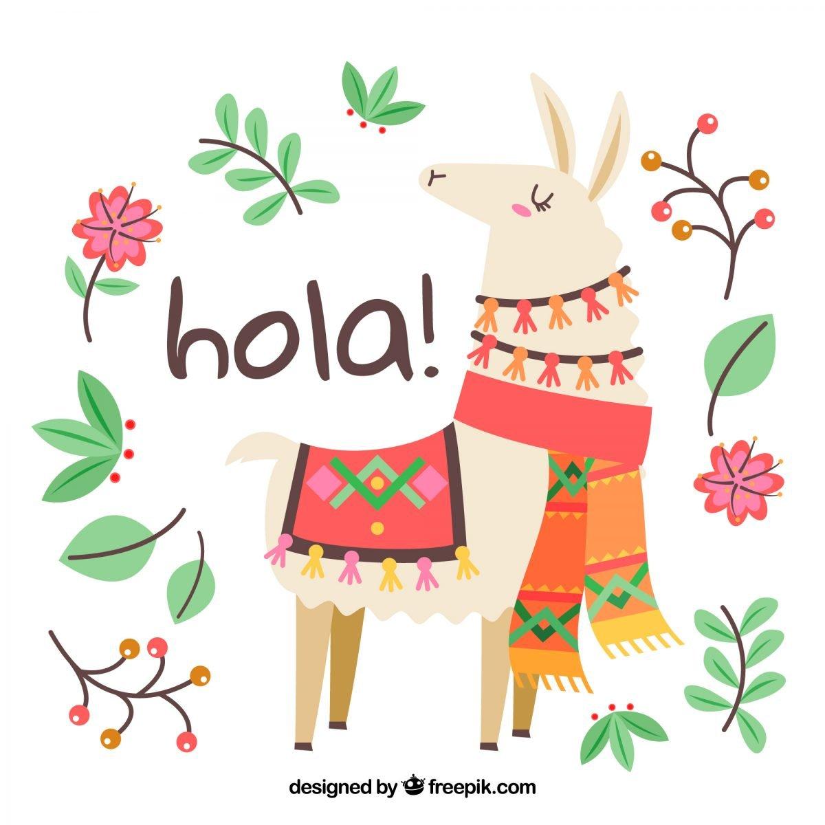 ilustracion llama alpaca descarga gratis