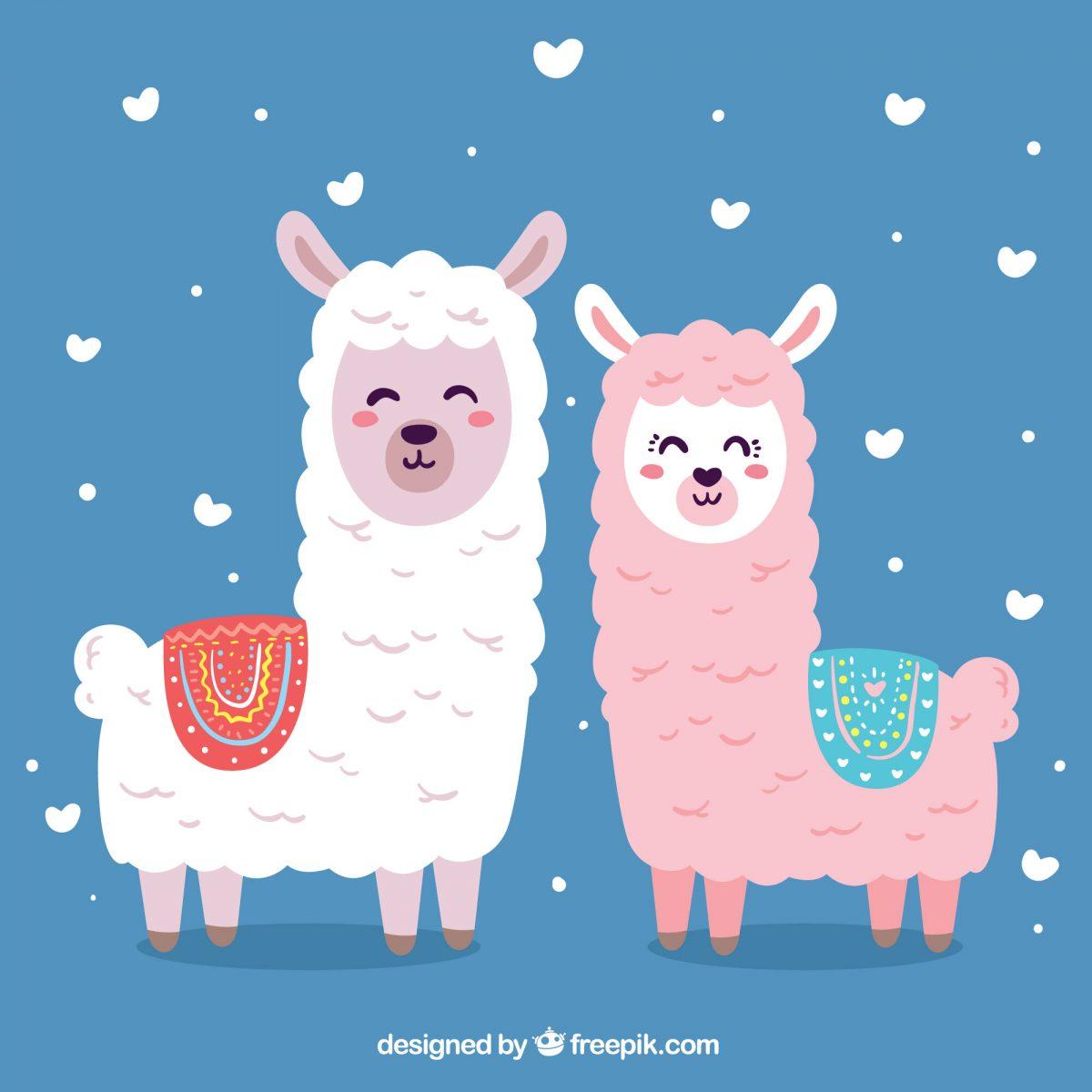 ilustracion llama alpaca digital descarga imprimir